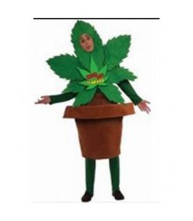 Ανδρική Στολή Χαρούμενο Φυτό από το looklike.gr